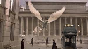fantastic-beasts-bird-city
